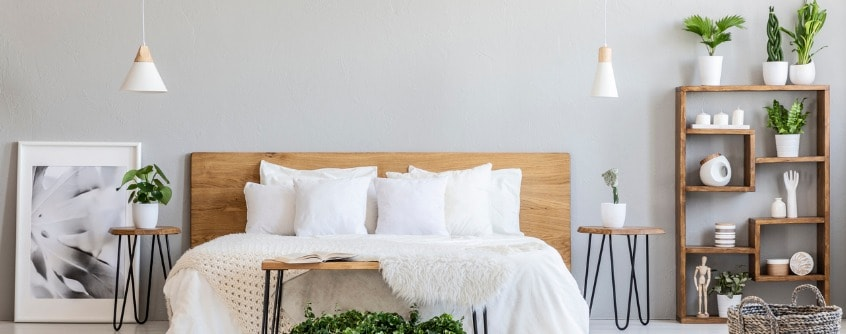bedroom plants that are good for your health
