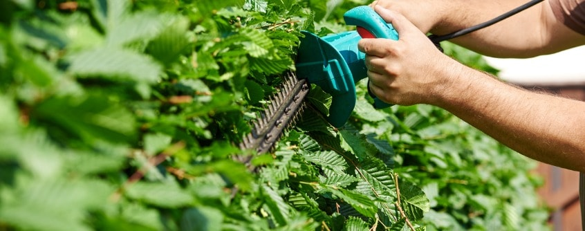 benefits of corded electric hedge trimmers