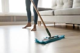 cleaning the house tips