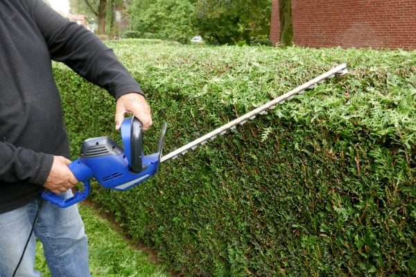 corded electric hedge trimmers safety