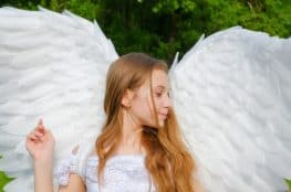 diy-angel-wing-ideas