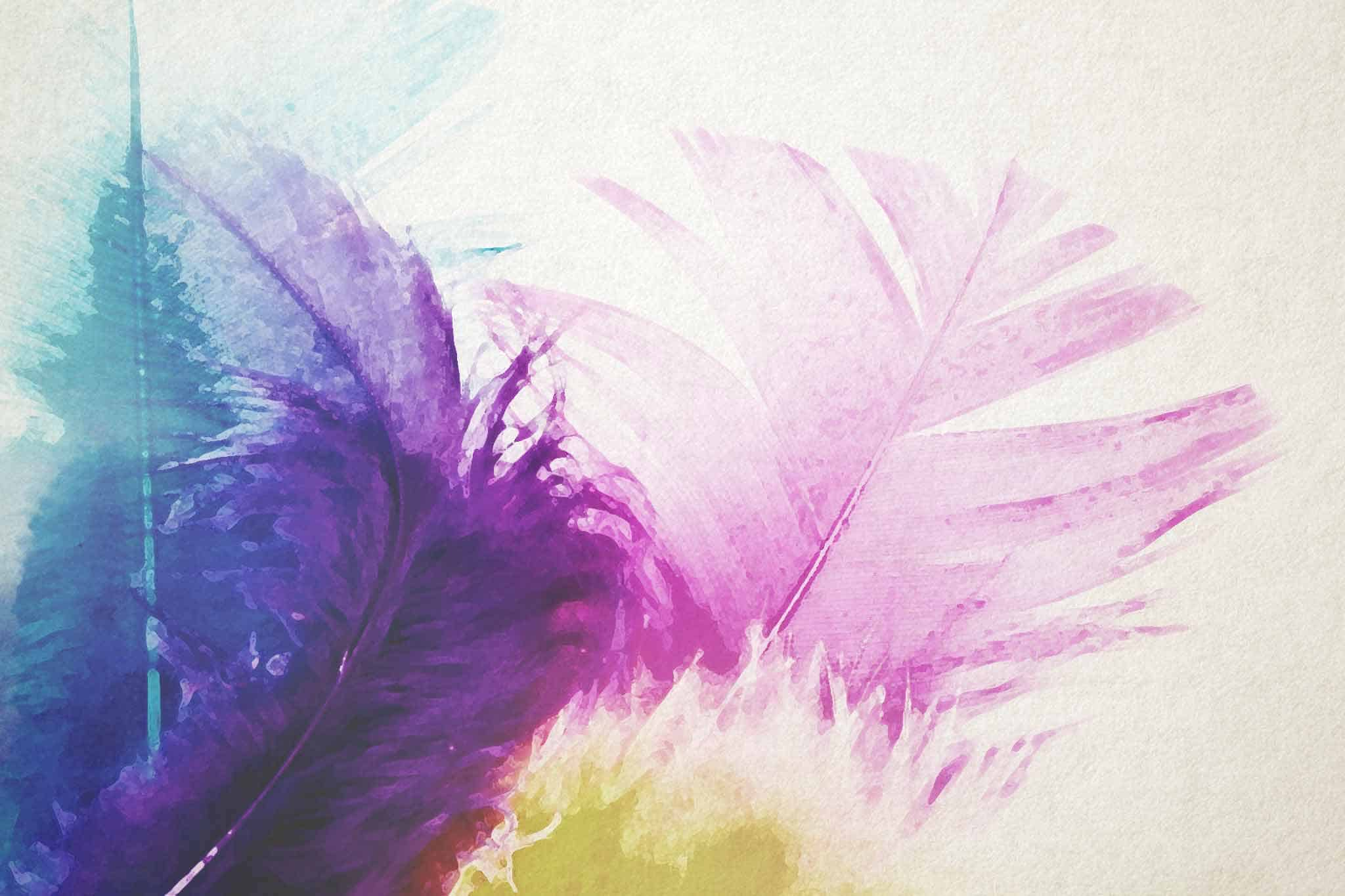 feather pink yellow multcolor
