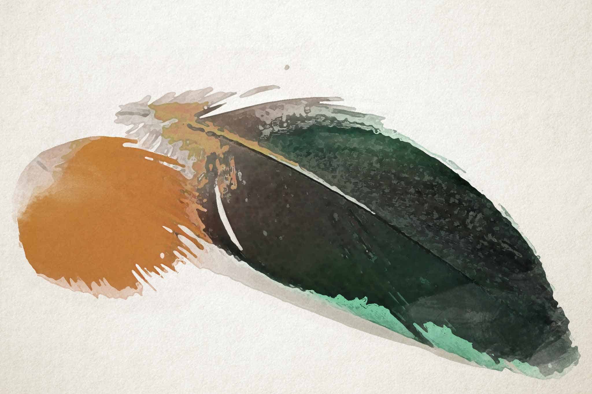 feather yellow green