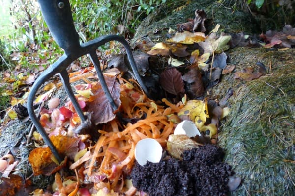 heap-of-compost
