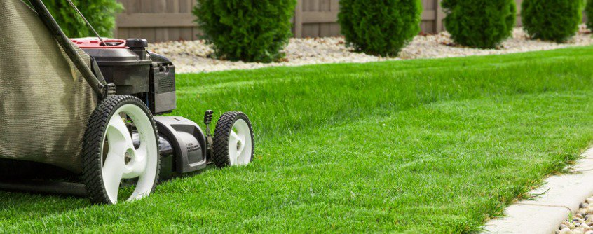 lawn-care-fertilizer-guide
