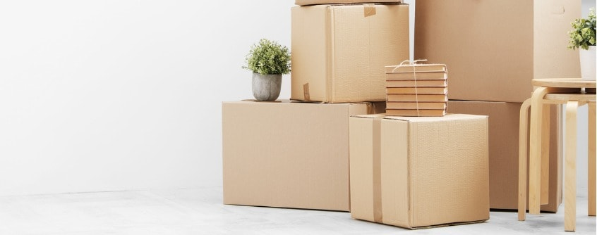 pack things to move out