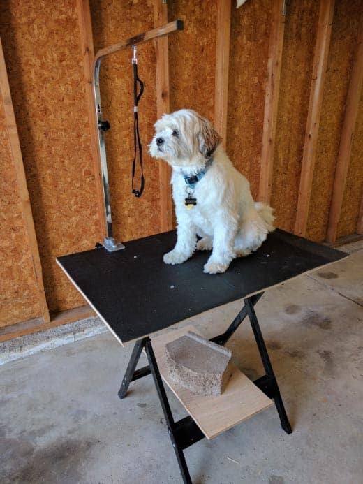 repurposed-dog-grooming-table