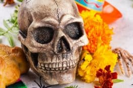 skull-decor-ideas