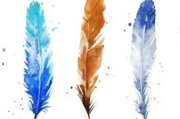 watercolor feather hdr
